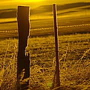 Fence Post In The Morning Light Poster