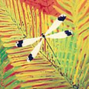 Fern Dragon Poster by Anna Skaradzinska