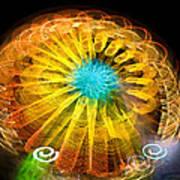 Ferris Wheel Flower Poster