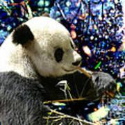 Festive Panda Poster
