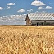 Field Of Grain Poster