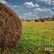 Field Of Haystacks Poster