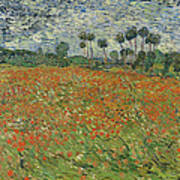 Field Of Poppies, Auvers-sur-oise, 1890 Poster