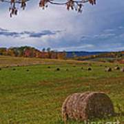 Field Of Round Bales Poster