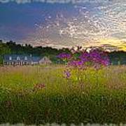 Field Of View Sunset Poster