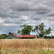 Fields Of Golden Grain Poster