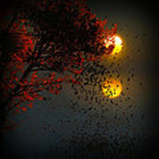 Fiery Fall... Poster