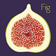 Fig Poster by Christy Beckwith