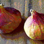 Figs Still Life Pop Art Poster
