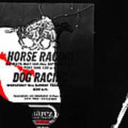 Film Noir Jim Thompson The Grifters 1990 2 Horse Dog Tracks Sign Juarez 1977 Poster