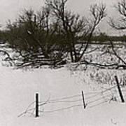 Film Noir Nicholas Ray Ida Lupino On Dangerous Ground 1952 1 Rko Radio Fence Near Aberdeen Sd 1965 Poster