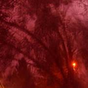Film Noir Orson Welles Joseph Cotten Journey Into Fear 1942 Summer Storm Trees Casa Grande 2004 Poster