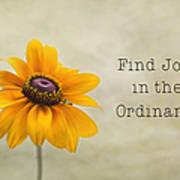 Find Joy Poster