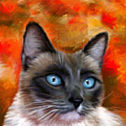 Fire And Ice - Siamese Cat Painting Poster
