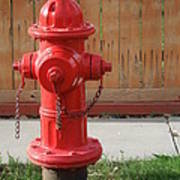 Fire Hydrant 3 Poster
