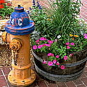 Fire Hydrant With Flowers Poster