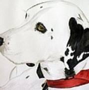 Firedog Poster