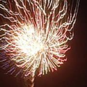 Firework Burst Poster by April Lerro