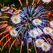 Fireworks Flower Abstract Poster