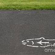 Fish And Arrow On Pavement Poster