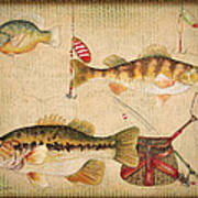 Fish Trio-a-basket Weave Border Poster