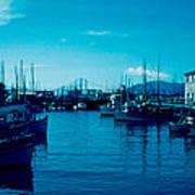 Fisherman's Wharf 1955 Poster