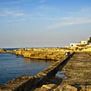Fishing - Alexandria Egypt Poster