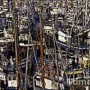 Fishing Boats At Fishermens Terminal Poster