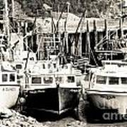 Fishing Boats In Alma Poster