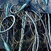 Fishing Net Play   Poster by Colette V Hera  Guggenheim