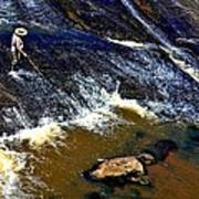 Fishing On The South Fork River Poster