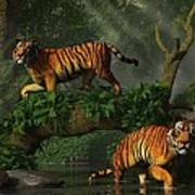 Fishing Tigers Poster