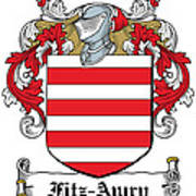 Fitzawry Coat Of Arms Irish Poster