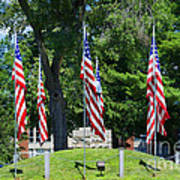 Flag - Illinois Veterans Home - Luther Fine Art Poster by Luther Fine Art