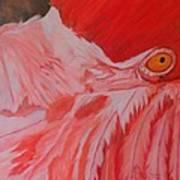 Flamboyant, Flamingo   Poster