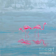 Flamingo Couple In Shallow Waters Poster