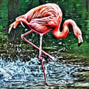 Flamingo Splash Two Poster