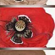 Flanders Poppy Triptych Poster
