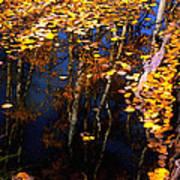 Floating Gold Poster
