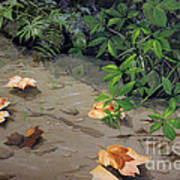 Floating Leaves By George Wood Poster