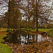 Floating Leaves Poster