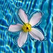 Floating Soul Poster