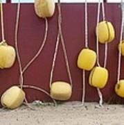 Floats At Chileno Bay Poster