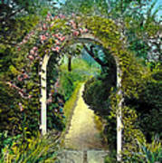 Floral Arch And Path Poster
