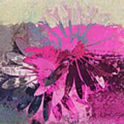 Floral Fiesta - S31at01b Poster