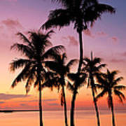 Florida Breeze Poster