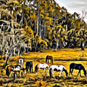 Florida Horses Two Poster