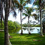 Florida Lake Poster