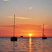 Florida Sailboat Sunset Poster