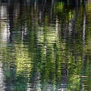 Florida Silver Springs River Poster